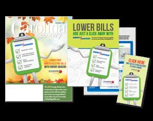 Energy Advisor Campaign